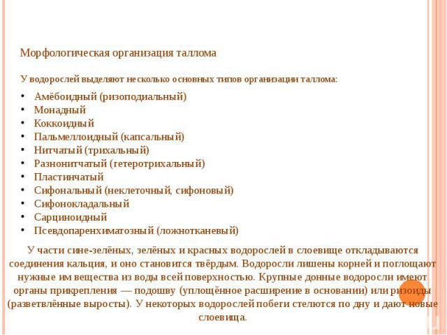 Морфологическая организация таллома У водорослей выделяют несколько основных типов организации таллома:
