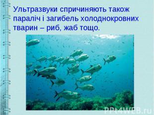 Ультразвуки спричиняють також параліч і загибель холоднокровних тварин – риб, жа