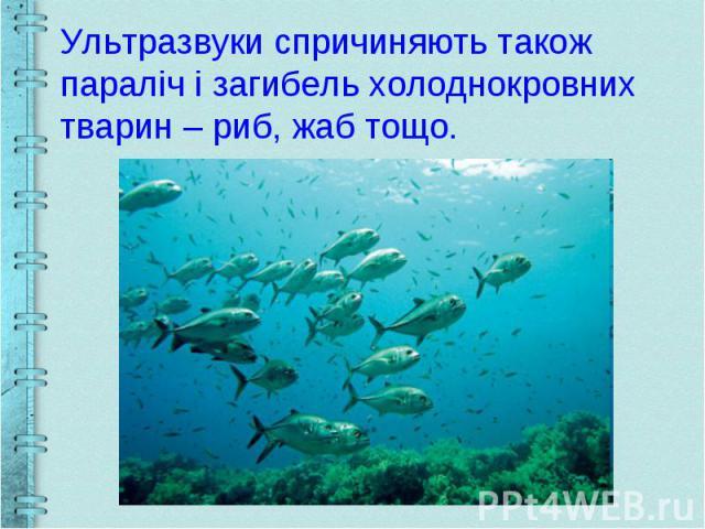 Ультразвуки спричиняють також параліч і загибель холоднокровних тварин – риб, жаб тощо.