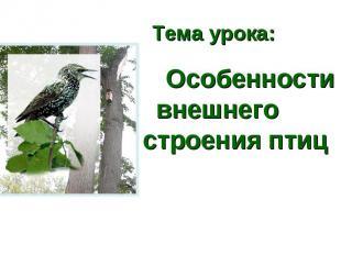 Тема урока: Особенности внешнего строения птиц