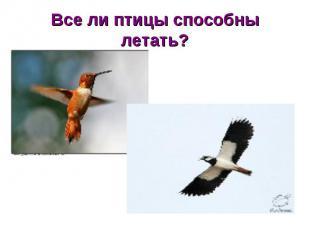 Все ли птицы способны летать?