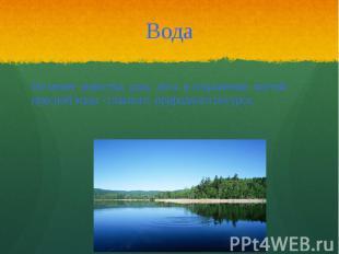 Вода Не менее известна роль леса в сохранении чистой пресной воды - главного при