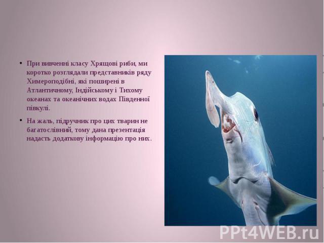 При вивченні класу Хрящові риби, ми коротко розглядали представників ряду Химероподібні, які поширені в Атлантичному, Індійському і Тихому океанах та океанічних водахПівденної півкулі. На жаль, підручник про цих тварин не багатослівний, тому д…