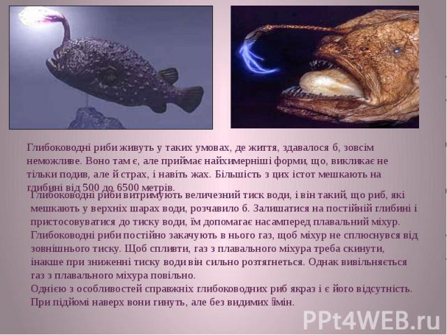 Глибоководні риби живуть у таких умовах, де життя, здавалося б, зовсім неможливе. Воно там є, але приймає найхимерніші форми, що, викликає не тільки подив, але й страх, і навіть жах. Більшість з цих істот мешкають на глибині від 500 до 6500 метрів.