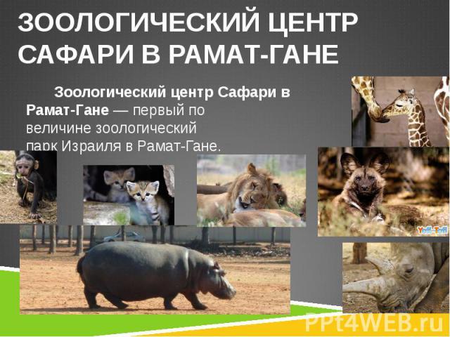 Зоологический центр Сафари в Рамат-Гане— первый по величинезоологический паркИзраилявРамат-Гане. Зоологический центр Сафари в Рамат-Гане— первый по величинезоологический паркИзраилявРамат-Гане.