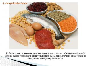Из белка строятся защитные факторы иммунитета — антитела( иммуноглобулины). Если