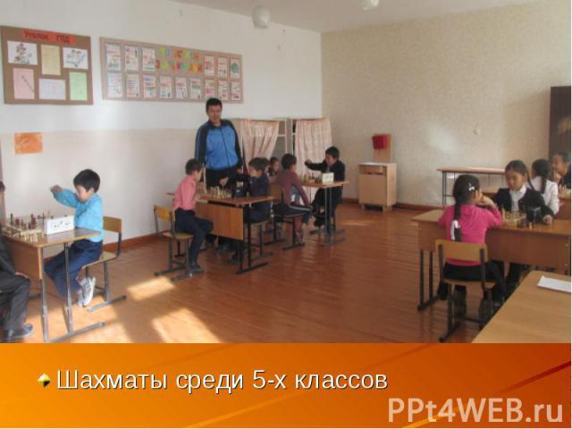 Шахматы среди 5-х классов