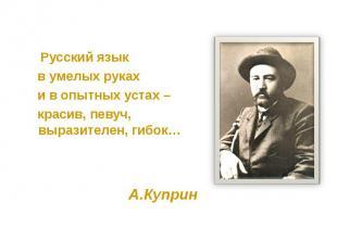 Русский язык Русский язык в умелых руках и в опытных устах – красив, певуч, выра