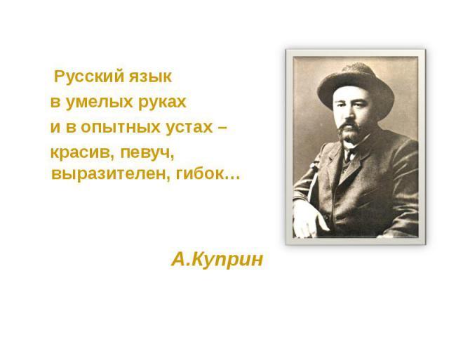 Русский язык Русский язык в умелых руках и в опытных устах – красив, певуч, выразителен, гибок… А.Куприн