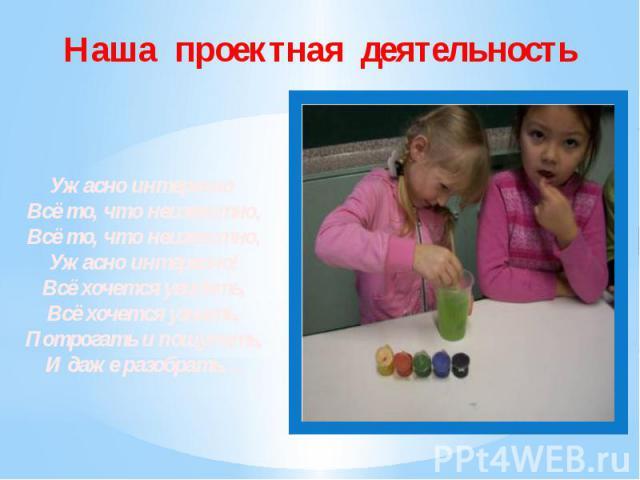 Наша проектная деятельность