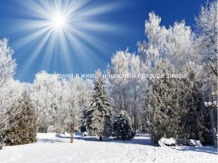 Изменения в живой и неживой природе зимой.