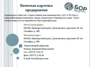 Визитная карточка предприятия Место нахождения: 692443, Приморский край, г.Дальн