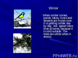 Winter When winter comes, ponds, lakes, rivers and streams are frozen over. It i