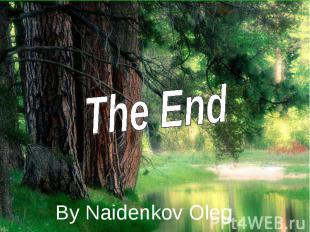 The End By Naidenkov Oleg