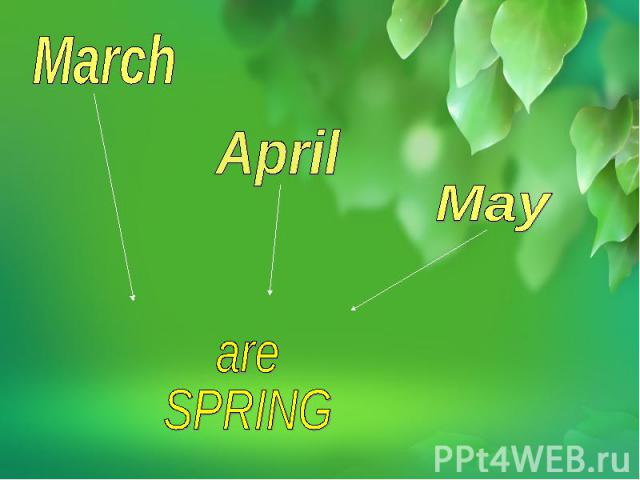are SPRING