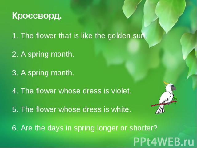 Кроссворд. 1. The flower that is like the golden sun. 2. A spring month.3. A spring month.4. The flower whose dress is violet.5. The flower whose dress is white.6. Are the days in spring longer or shorter?