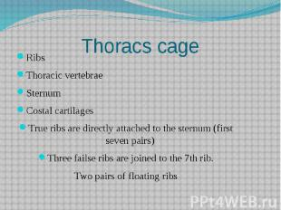 Thoracs cage Ribs Thoracic vertebrae Sternum Costal cartilages True ribs are dir