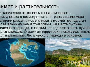 Климат и растительность Вулканическая активность конца триасового - начала