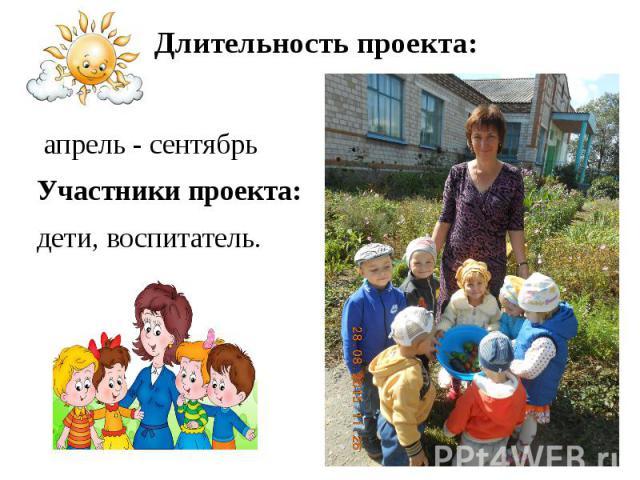 Длительность проекта: апрель - сентябрь Участники проекта: дети, воспитатель.