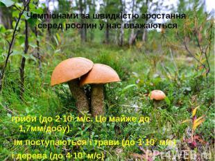 Чемпіонами за швидкістю зростання серед рослин у нас вважаються гриби (до 2·10-7