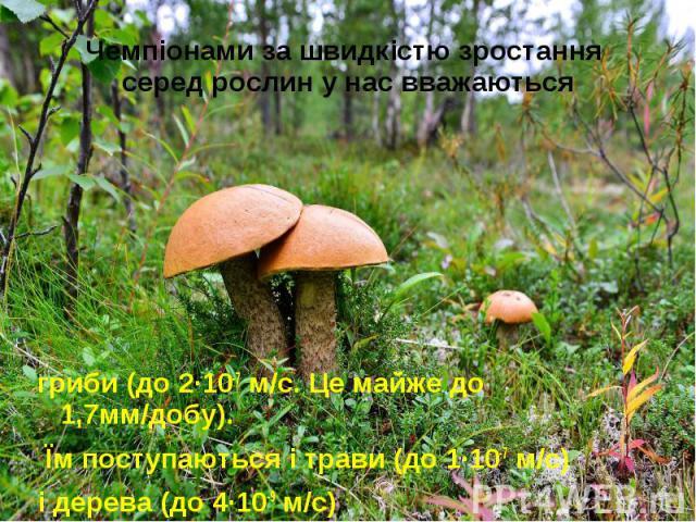 Чемпіонами за швидкістю зростання серед рослин у нас вважаються гриби (до 2·10-7 м/с. Це майже до 1,7мм/добу). Їм поступаються і трави (до 1·10-7 м/с) і дерева (до 4·10-9 м/с)