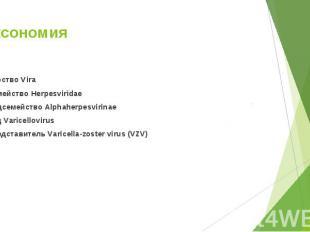 Царство Vira Царство Vira Семейство Herpesviridae Подсемейство Alphaherpesvirina