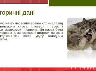 Свою назву червоний вовчак отримала від латинського слова «люпус» - вовк і «эрит