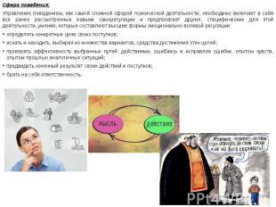 Сфера поведения: Сфера поведения: Управление поведением, как самой сложной сферо