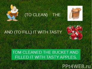 TOM CLEANED THE BUCKET AND FILLED IT WITH TASTY APPLES.