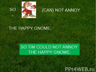 SO TIM COULD NOT ANNOY THE HAPPY GNOME.