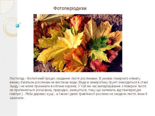 Фотоперіодизм Листопад - біологічний процес скидання листя рослинами. В умовах помірного клімату взимку багатьом рослинам не вистачає води. Вода в замерзлому ґрунті знаходиться в стані льоду і не може проникати в клітини коренів. У той же час випаро…