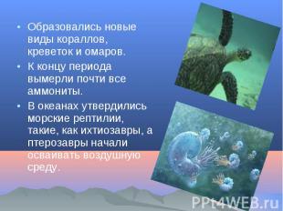 Образовались новые виды кораллов, креветок и омаров. Образовались новые виды кор
