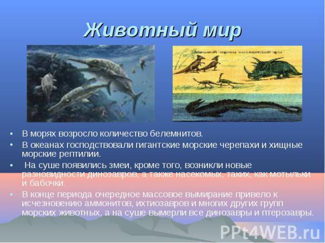 В морях возросло количество белемнитов. В морях возросло количество белемнитов. В океанах господствовали гигантские морские черепахи и хищные морские рептилии. На суше появились змеи, кроме того, возникли новые разновидности динозавров, а также насе…
