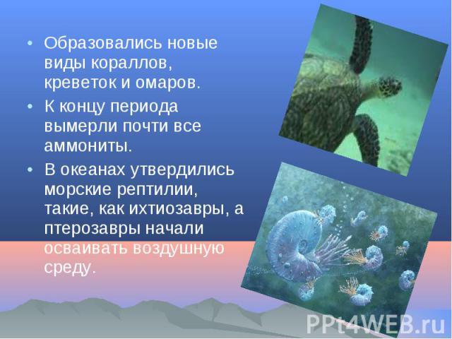Образовались новые виды кораллов, креветок и омаров. Образовались новые виды кораллов, креветок и омаров. К концу периода вымерли почти все аммониты. В океанах утвердились морские рептилии, такие, как ихтиозавры, а птерозавры начали осваивать воздуш…