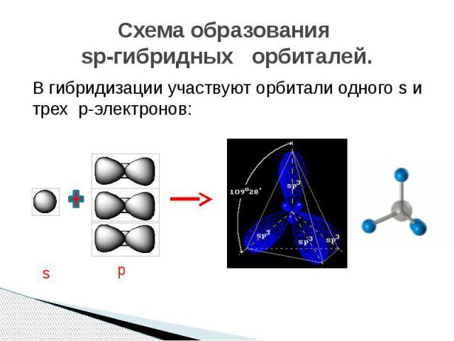 Схема образования sp-гибридных орбиталей. В гибридизации участвуют орбитали одного s и трех p-электронов: