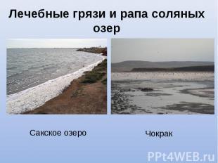 Сакское озеро Сакское озеро