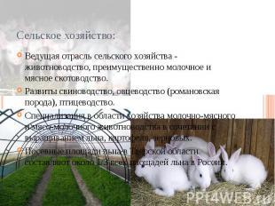 Сельское хозяйство: Ведущая отрасль сельского хозяйства - животноводство, преиму