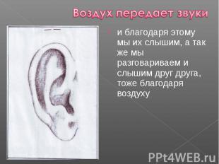 и благодаря этому мы их слышим, а так же мы разговариваем и слышим друг друга, т
