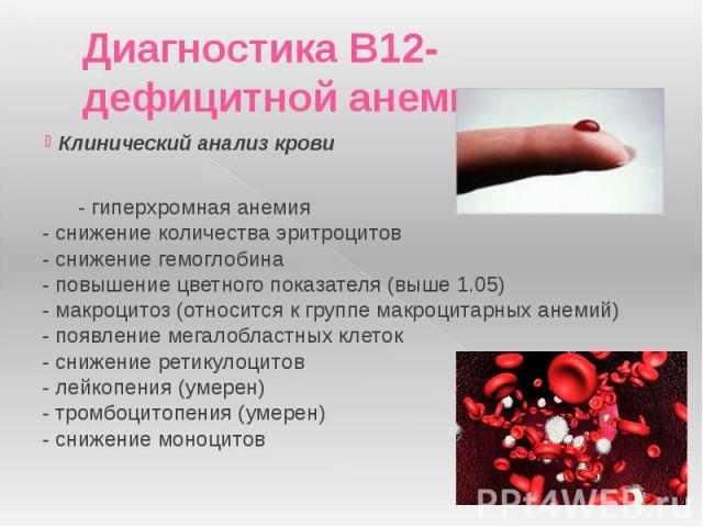 Диагностика В12-дефицитной анемии: Клинический анализ крови - гиперхромная анемия - снижение количества эритроцитов - снижение гемоглобина - повышение цветного показателя (выше 1.05) - макроцитоз (относится к группе мак…