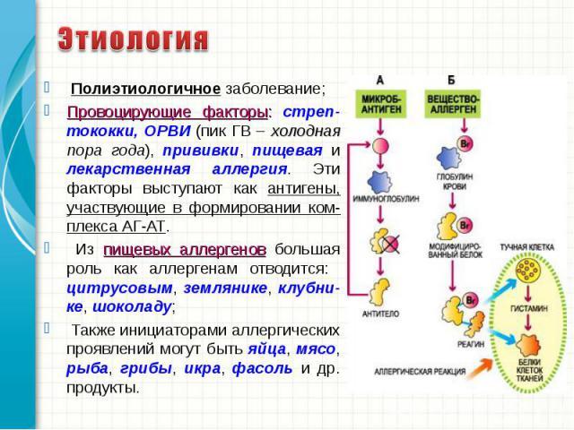 Полиэтиологичное заболевание; Полиэтиологичное заболевание; Провоцирующие факторы: стреп-тококки, ОРВИ (пик ГВ – холодная пора года), прививки, пищевая и лекарственная аллергия. Эти факторы выступают как антигены, участвующие в формировании ком-плек…
