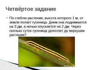 Четвёртое задание По стеблю растения, высота которого 1 м, от земли ползет гусен