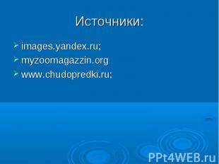 Источники:images.yandex.ru;myzoomagazzin.orgwww.chudopredki.ru;
