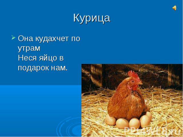 КурицаОна кудахчет по утрамНеся яйцо в подарок нам.