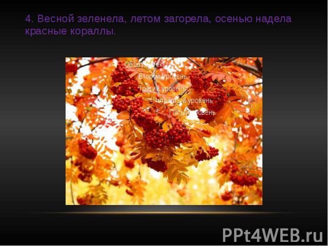 4. Весной зеленела, летом загорела, осенью надела красные кораллы.