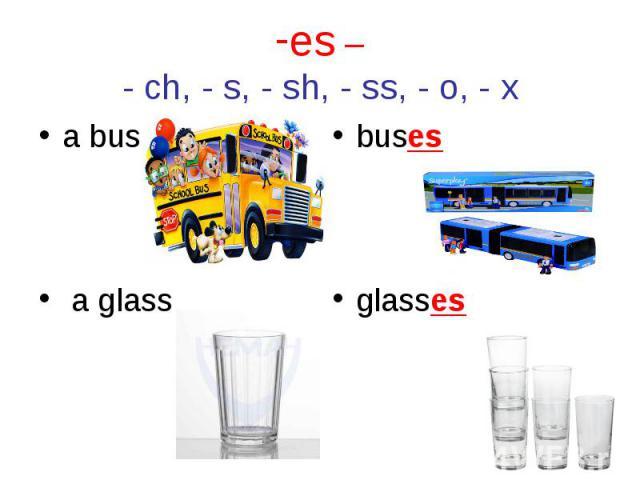 a bus a bus