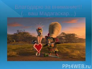 Благодарю за внимание!!! (…ваш Мадагаскар…)