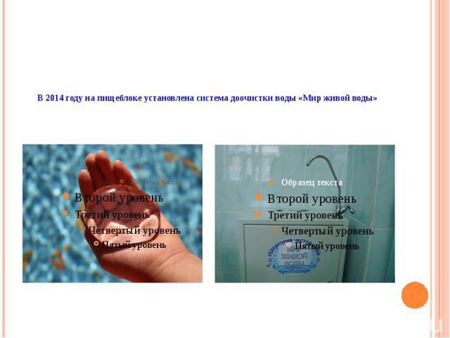 В 2014 году на пищеблоке установлена система доочистки воды «Мир живой воды»