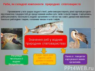 Риби, як складові компоненти природних співтовариств Риби, як складові компонент