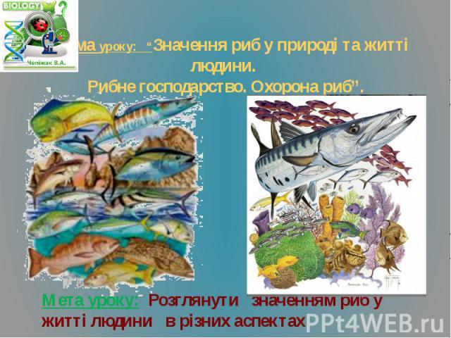 """Тема уроку: """"Значення риб у природі та житті людини. Рибне господарство. Охорона риб"""". Мета уроку: Розглянути значенням риб у житті людини в різних аспектах"""