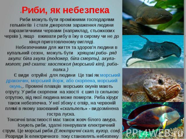 Риби, як небезпека